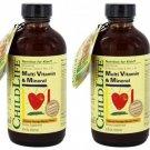 Child Life Vitamin Multi & Mnrls pack of 2