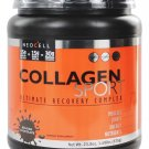 NEOCELL - Collagen Sport Ultimate Recovery Complex Belgian Chocolate - 1.49 lbs