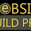 website professional business site design