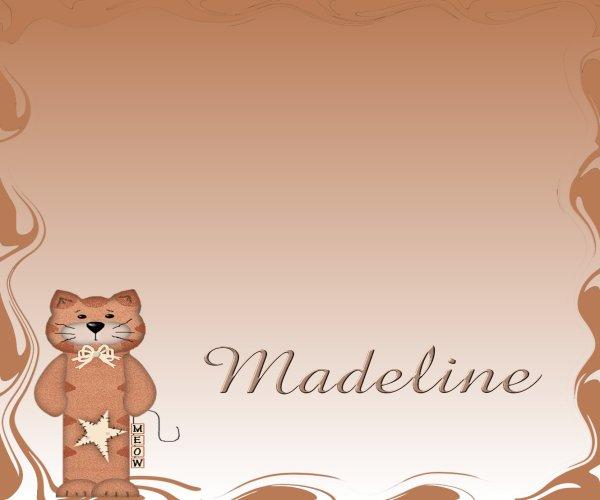 Orange Tabby Cat Checkbook Cover