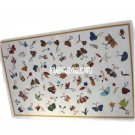 Adornment Marble Side Top Table Designer Butterfly Inlay Patio Decorative H3915