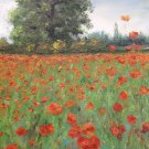 "Oil Painting—Poppies—Fine Art Oil Painting-Size: 16"" x  12"" (40 cm x 30 cm)"