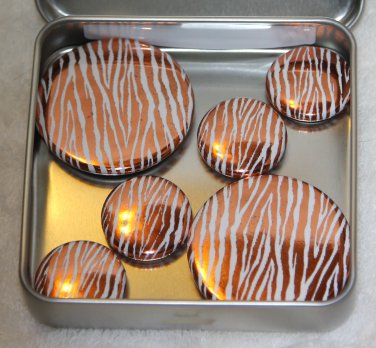 Zebra Print Foil Magnet Set
