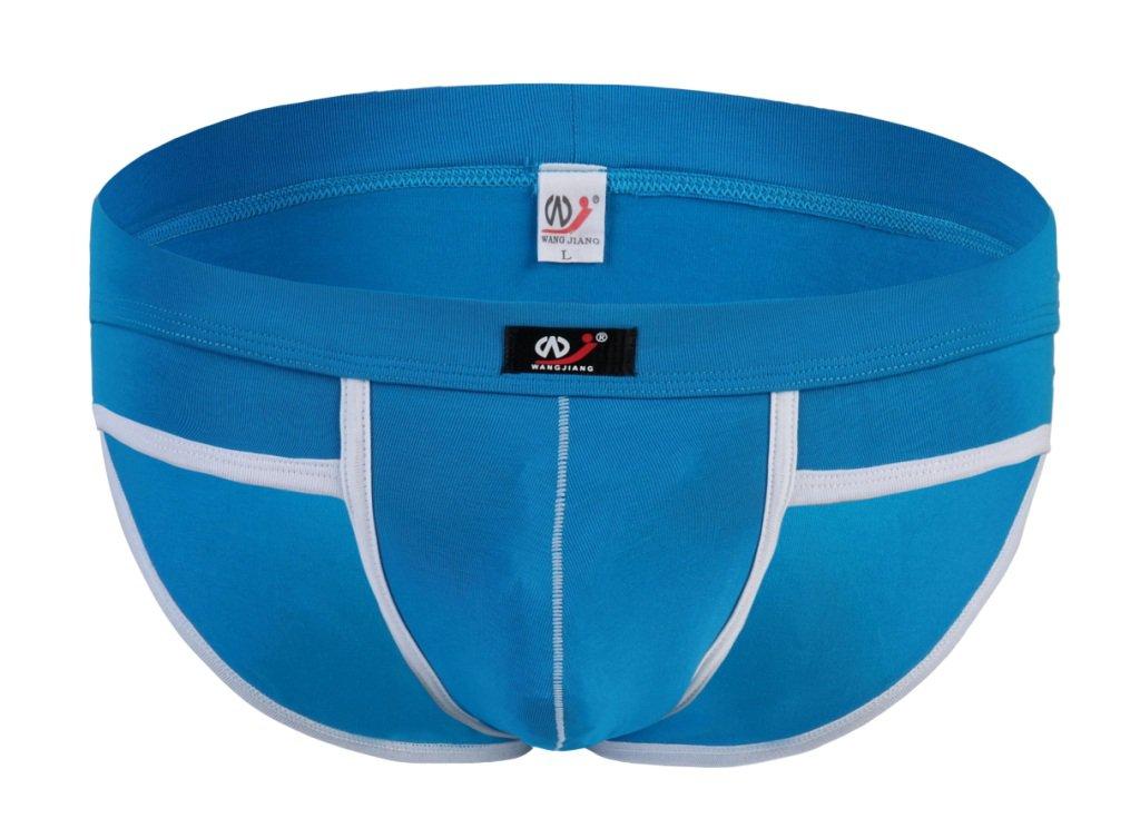 #5002SJ Blue Wangjiang Men's sexy underwear cotton pouch cuecas calzoncillos briefs underpants