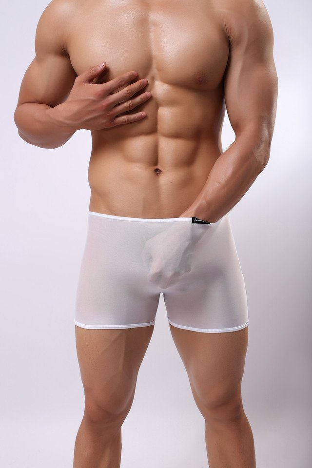 #E014 sexy men's underwear 3pcs low rise mesh transparent seamless boxer shorts white