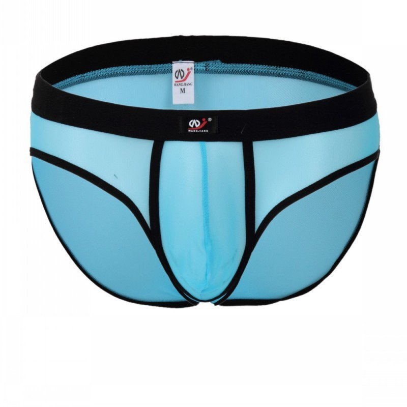 Blue 3pcs men's sexy underwear mesh gauze briefs underpants #2003SJ
