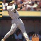 1993 SP 44 Terry Steinbach
