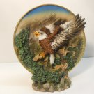 Eagle Decorative Plate Set  New Vintage n48