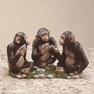 ALAB MONKEYS PLAYING CARDS