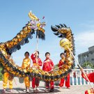 4m Length sz5 black golden plated 4 student Chinese DRAGON DANCE game  Festival mascot Costume