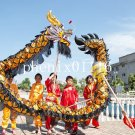5.5m size 6 black 6 kids golden plated CHINESE DRAGON DANCE Folk Festival mascot Costu
