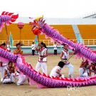 6m size 4 purple 4 adult silk frabic CHINESE DRAGON DANCE Folk Festival mascot Costume
