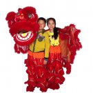 F/S CHILDREN RED Southern Lion Dance mascot Costume Festival christams parade