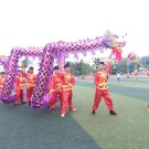 7m Length sz5 purple golden plated 6 student Chinese DRAGON DANCE game  Festival mascot Costume