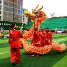 16m Length sz5# yellow silk print fabric 12 students Chinese DRAGON DANCE Folk mascot Costume