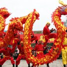 decor 5.5m size 6 red 6 kids golden CHINESE DRAGON DANCE Festival mascot Costume