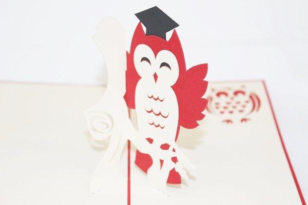 3D PopUp Handmade Graduation Owl  Card US Seller Love Pop Card