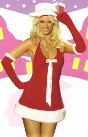Santa's Honey Womens Halloween Costume