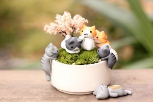 6pc Mini Crawling Cat Fairy Garden Figure, Miniature Figurines, Desk Decoration