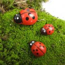 10pc Set Coccinella septempunctata Miniature Figurine Fairy Garden Toy Dollhouse
