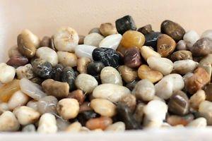 100g Stone Gravel Fairy Garden Accessories, Miniature  DIY Pebbles rivers Decor