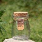 Mini Glass Bottle Wish Bottle Succulent Moss Container Fairy Garden Accessories
