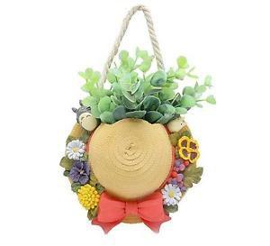 Home Decor Wall Hanging Hat Flowerpot Totoro Plants Container Fairy Garden