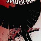Amazing Spiderman Spider-Man #624 near mint comic (2010)