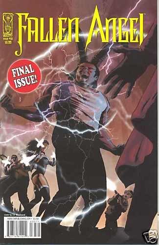 FALLEN ANGEL IDW #33 near mint comics (2009) Final Issue
