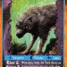 Rage Seeks-the-Truth (The Umbra) near mint card