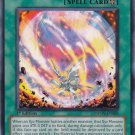 Yugioh XYZ Territory (Photon Shockwave) PHSW-EN088 1st Edition near mint card Silver Letter Rare