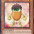 Yugioh Acorno (PHSW-EN006) near mint card 1st Edition Common