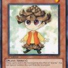 Yugioh Pinecono (PHSW-EN007) 1st Edition near mint card Common