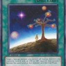 Yugioh Star Light, Star Bright (ORCS-EN052) unlimited edition near mint card Common