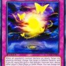 Yugioh Butterflyoke (GAOV-EN070) 1st edition near mint card Common