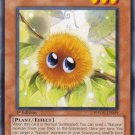 Yugioh Naturia Marron (PHSW-EN029) Unlimited Edition near mint card Common