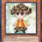 Yugioh Pinecono (PHSW-EN007) unlimited Edition near mint card Common