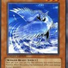 Yugioh Stealth Bird (GLD1-EN017) Limited Edition near mint card Common