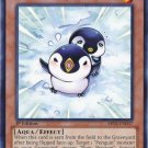 Yugioh Puny Penguin (ABYR-EN037) 1st edition near mint card Common