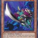 Yugioh Atlantean Attack Squad (REDU-EN036) Unlimited edition near mint card Common