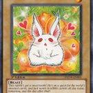 Yugioh Bunilla (PHSW-EN001) Unlimited Edition near mint card Common