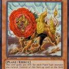Yugioh Botanical Lion (BP01-EN145) 1st edition slightly played card Common