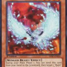 Yugioh Bujingi Ibis (SHSP-EN024) 1st edition near mint card Common
