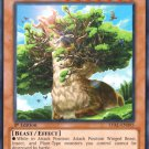 Yugioh Alpacaribou, Mystical Beast of the Forest (LVAL-EN095) 1st edition near mint card Common