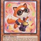 Yugioh Baby Raccoon Ponpoko (SHSP-EN014) 1st edition near mint card Common