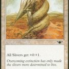 MTG Plated Sliver (Legions) played cards