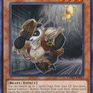 Yugioh Treasure Panda (COTD-EN032) 1st edition near mint cards Common