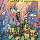 Teenage Mutant Ninja Turtles #73 Cover A 2017 - IDW TMNT near mint comics