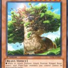 x3 Yugioh Alpacaribou, Mystical Beast of the Forest (LVAL-EN095) 1st edition near mint card