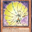Yugioh Bujingi Peacock (LVAL-EN027) 1st edition near mint card Rare
